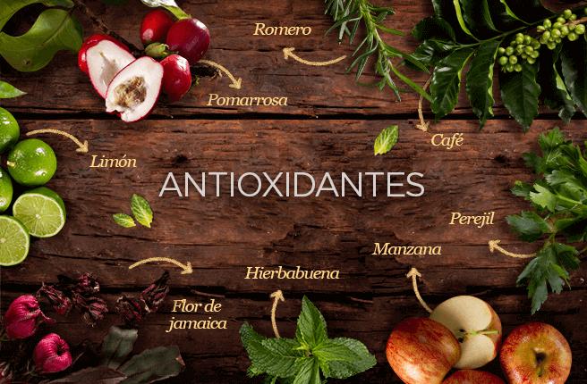 El café, el limón, la moringa, el perejil y la flor de jamaica son poderosos antioxidantes.