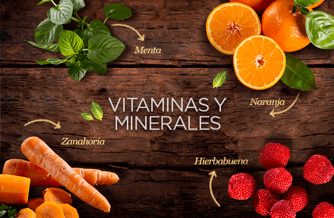 La menta, zanahoria, naranja, y hierbabuena son hierbas y frutas que aportan  vitaminas y minerales.