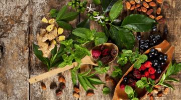 No creerás lo que las plantas medicinales pueden hacer por ti