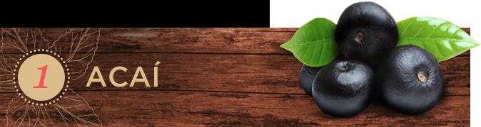 Frutas exòticas: Acaì