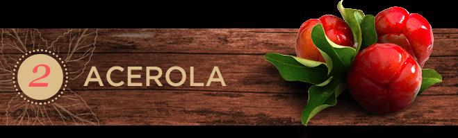 Frutas exóticas: Acerola