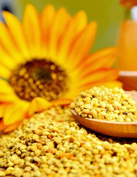 Varias fórmulas herbales de la medicina tradicional china contienen polen de abeja y se usan para prevenir el envejecimiento prematuro, aumentar la energía